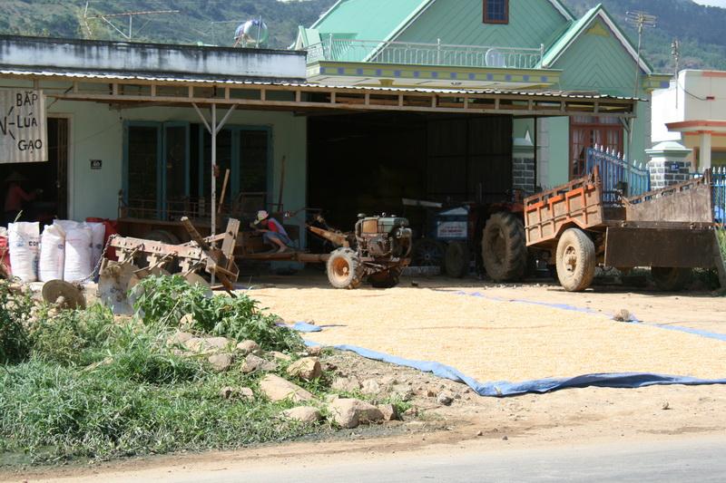 Vietnamesischer Bauernhof